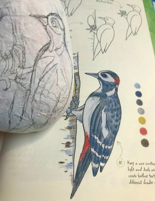 rock painting woodpecker