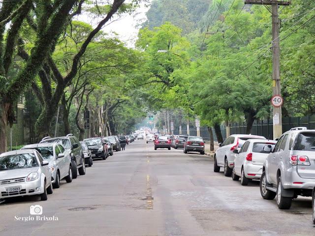 Vista de trecho da Avenida Quarto Centenário - Ibirapuera - São Paulo