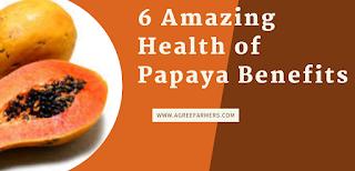 6 Amazing Health of Papaya Benefits