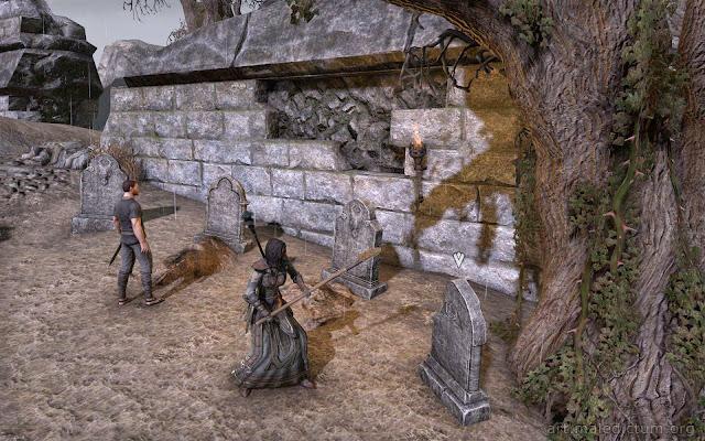 TES Online: Ветеран роет могилы для местных жителей
