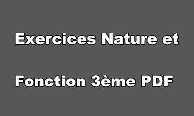 Exercices Nature et Fonction 3ème PDF