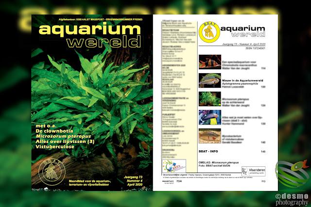 Aquarium Wereld
