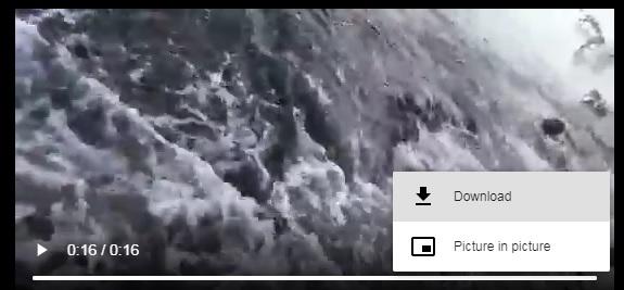 viral video download