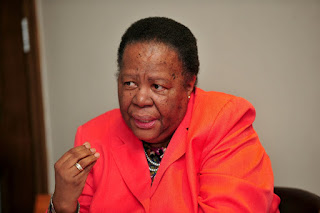 VOICES | Pandor should stop promoting anarchy