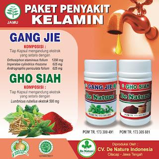 Obat Kencing Nanah Gangjie dan Ghosiah