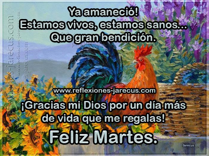 Feliz Martes, Ya amaneció. Estamos vivos, estamos sanos, que gran bendición. Gracias mi Dios por un día más de vida que me regalas.