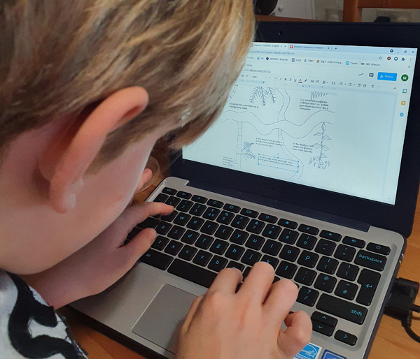 9-year-old studying English on the Chromebook