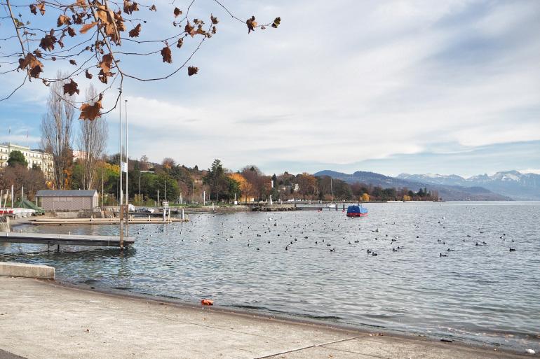 Port de Lausanne en Suisse, sur le Lac Léman
