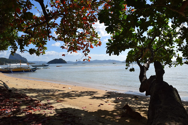 can you take money out in el nido