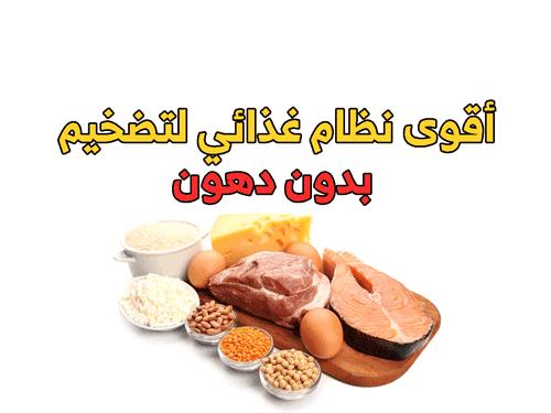 نظام غذائي لتضخيم عضل صافي