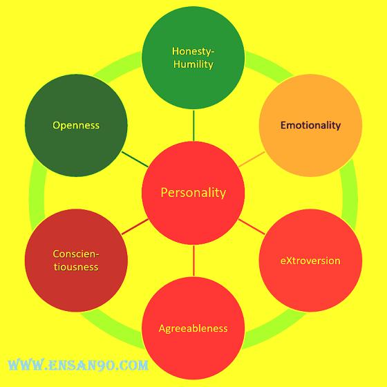 السمات الخمسة الكبرى للشخصية اختبار الشخصية NEO - انسان
