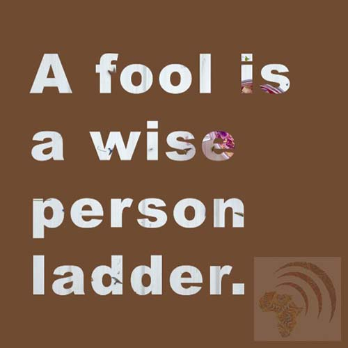 African proverb a fool is a wise person ladder.