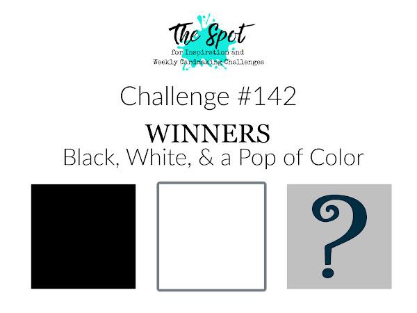 Challenge #142 Winners