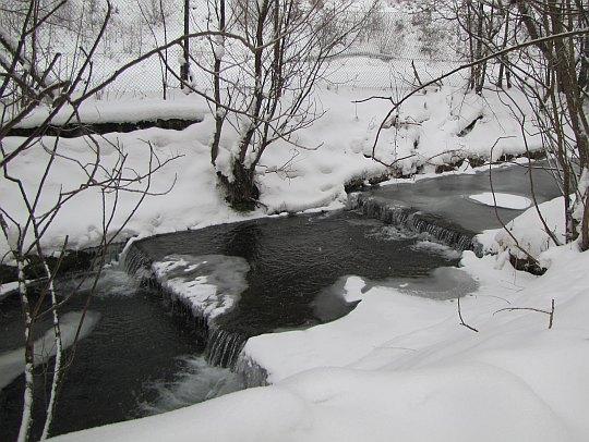 Potok Jawornik.