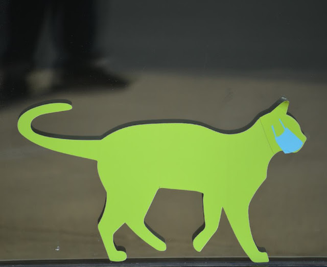 cat mask decal on window