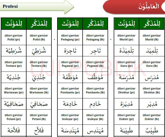 Kosa kata bahasa Arab 5
