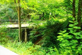 Vista del frondoso valle de Samuño por donde discurre la parte inicial de trayecto en tren