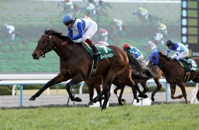 美國職業賭徒到香港玩賽馬,獲利65億,百勝方程式曝光