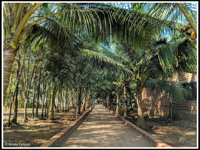 Sagar Darshan beach resort, Malgund