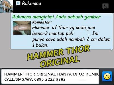 https://hammerofthorofficial.blogspot.co.id/2016/10/hammer-of-thor.html