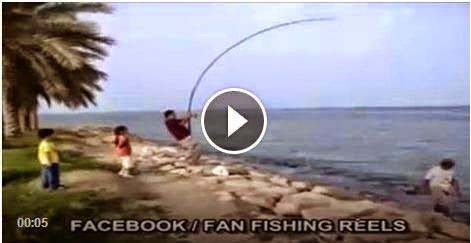 Wow This Is Fisher With Best Rod Fishing Better 1 Videos