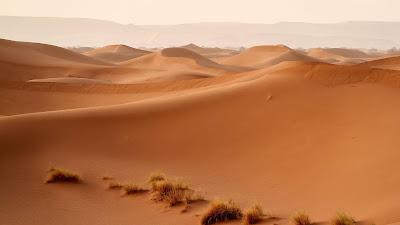 HD wallpaper desert, dunes, hills, sand, nature