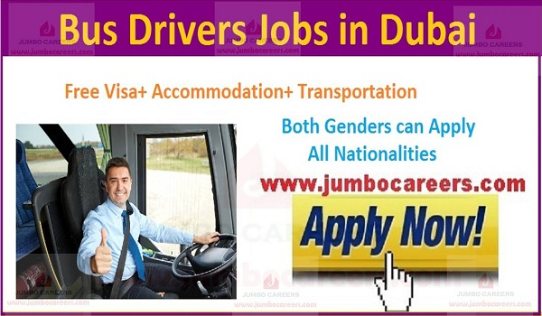 Driver jobs in Dubai salary and benefits,