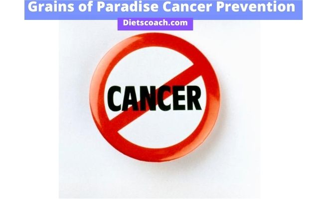 Effect of grains of paradise on cancer