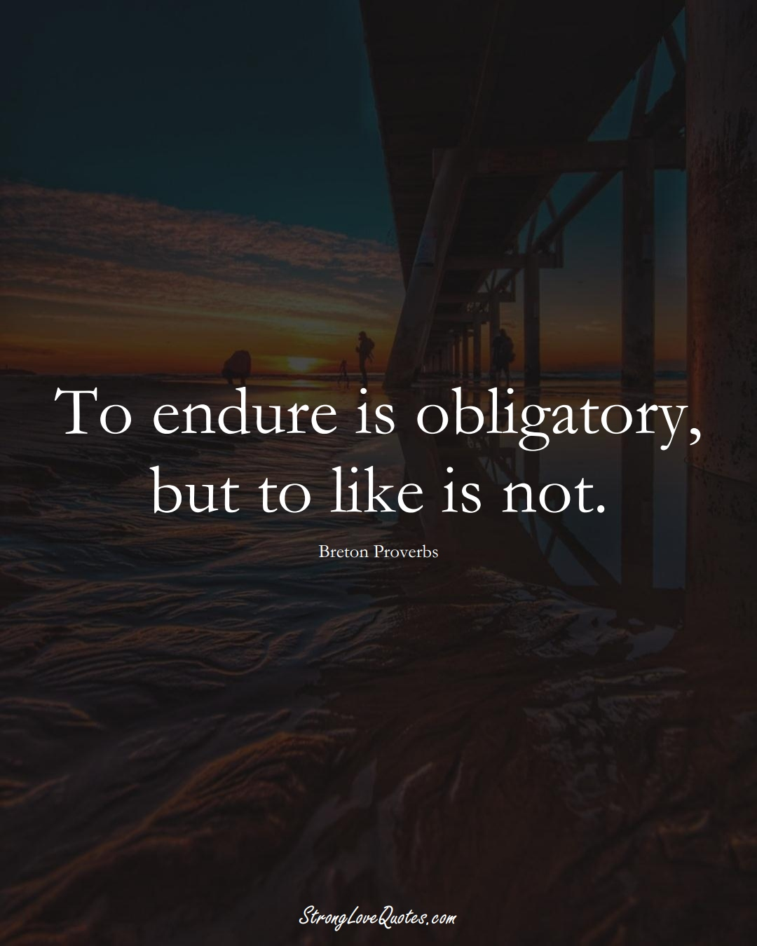To endure is obligatory, but to like is not. (Breton Sayings);  #aVarietyofCulturesSayings