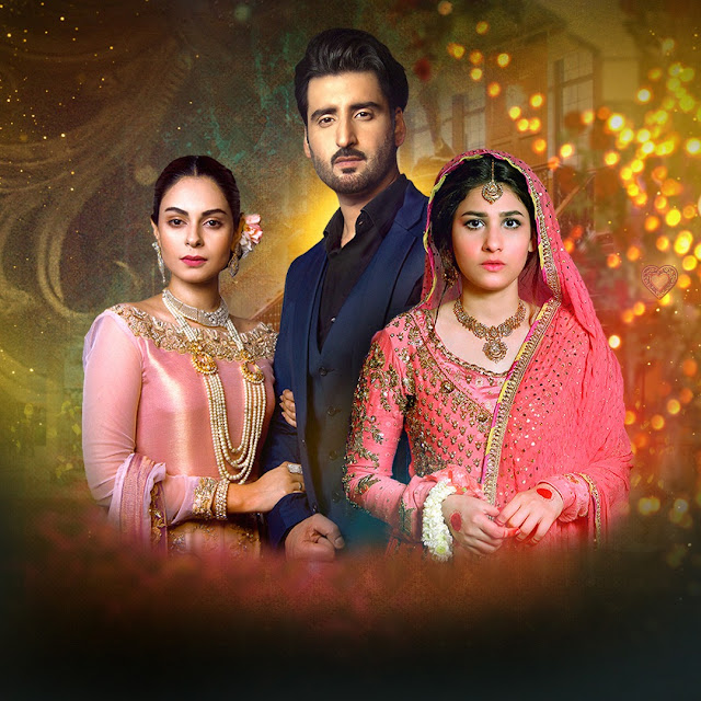 7th Sky Entertainment Dil-e-Gumshuda Ends with Record Ratings