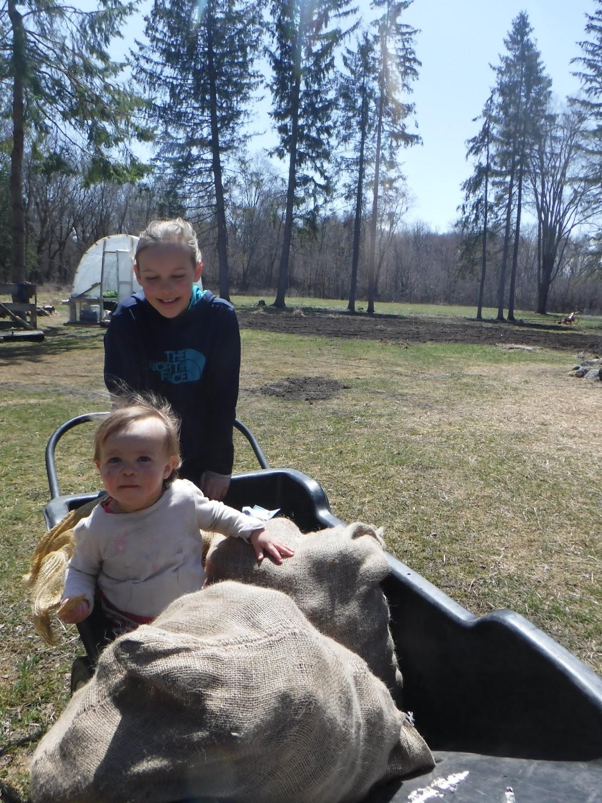blog Spunk farm