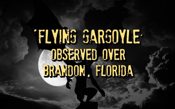 'Flying Gargoyle' Observed Over Brandon, Florida