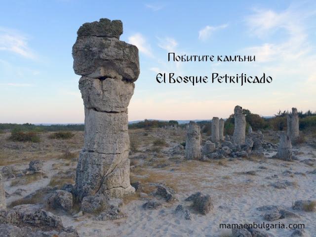 La Fertilidad Pobitite Kamani Bosque Petrificado Bulgaria