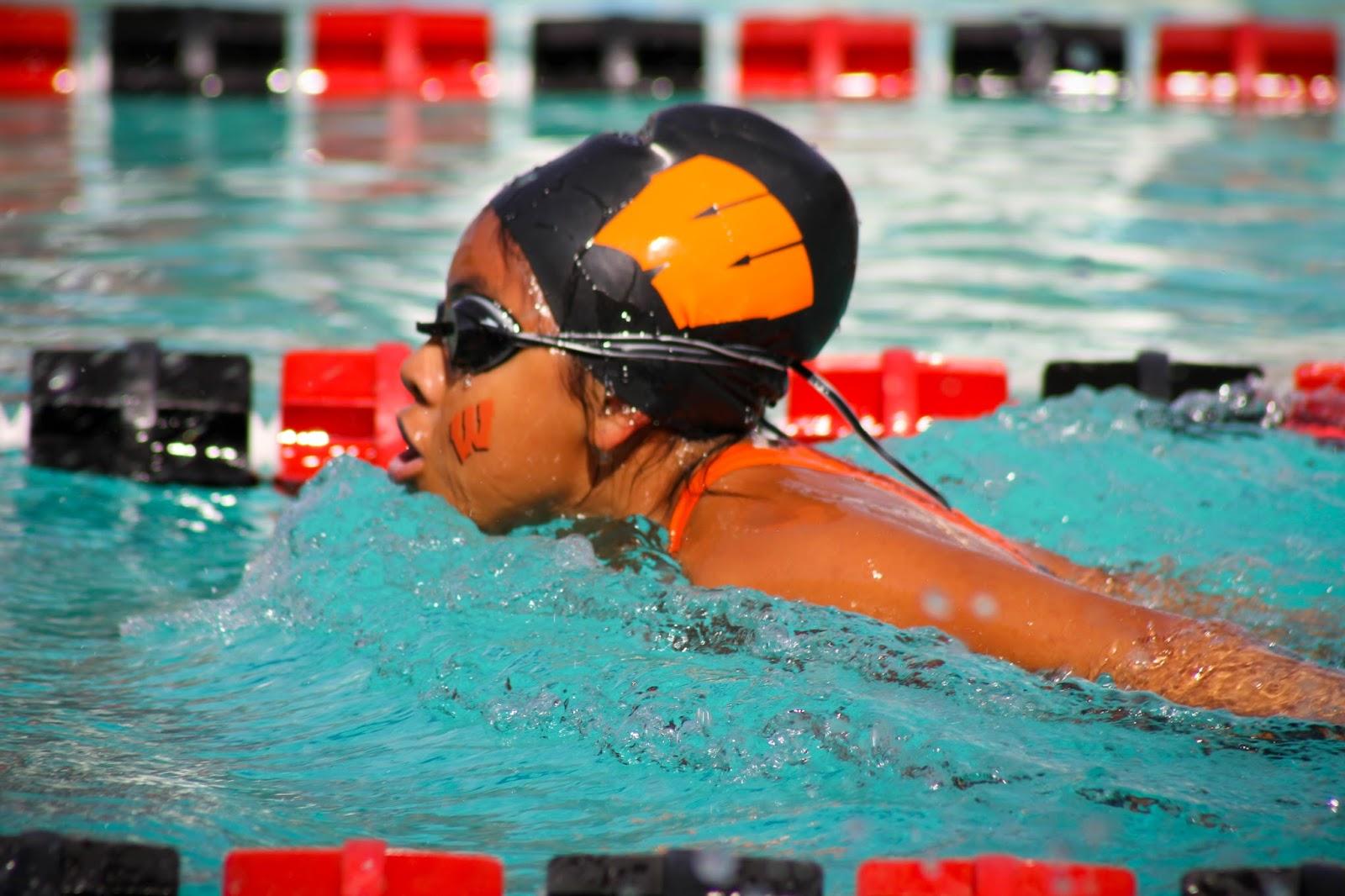 festival swim meet 2013