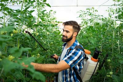 Hombre usando pesticida