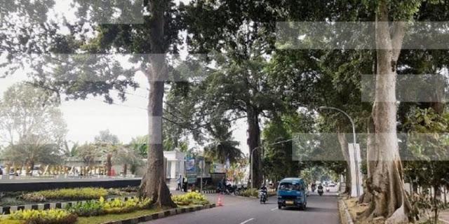 Kenangan di Jalan Ahmad Yani