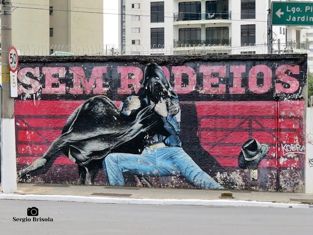 Close-up do Grafite Sem Rodeios - Pinheiros - São Paulo
