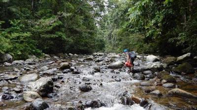 Hutan Nantu Gorontalo