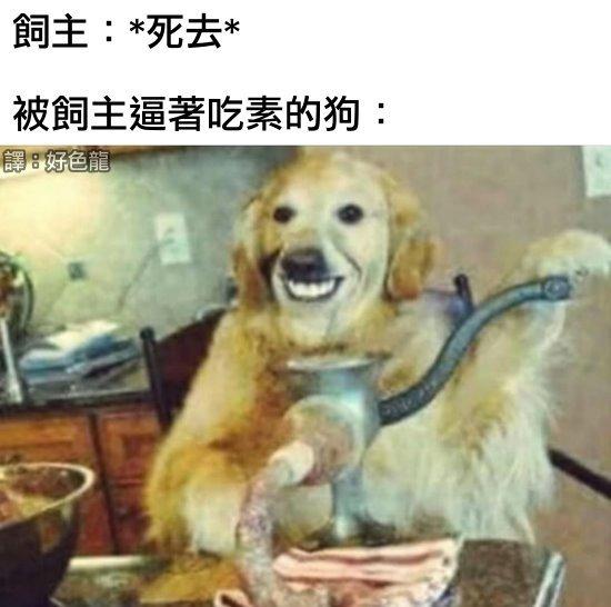 https://1.bp.blogspot.com/-a_iKYu1nf-A/YPPssZDy7LI/AAAAAAABEm4/8o7Xu8E0bks1GDUMAVDmjnemQPwo4skwACLcBGAsYHQ/s16000/16_vegan_dog.jpg
