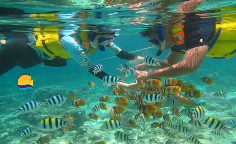 Objek Wisata Gili Nanggu Berlokasi di Lombok Barat Bagian Selatan