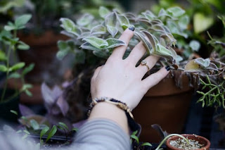 A woman's hand touching a potted plant.Photo by Lauren Fersti on Unsplash.