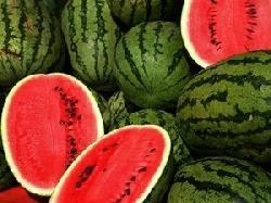 Thức ăn giúp cơ thể chống phóng xạ
