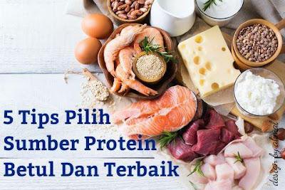 panduan memilih sumber protein yang betul