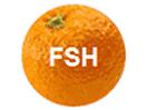 FSH TV