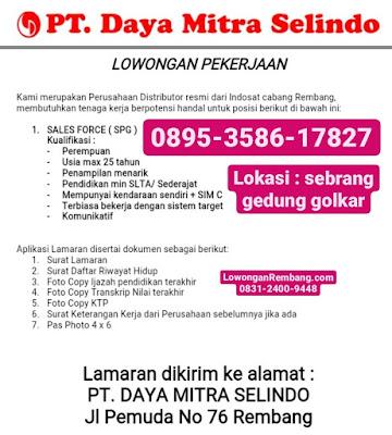 Lowongan Kerja Sales Force (SPG) PT Daya Mitra Selindo Indosat Rembang