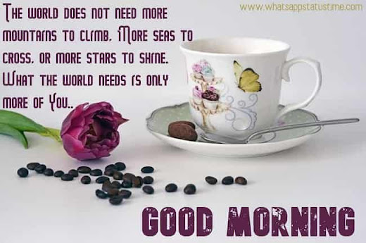 Pictures Of Good Morning Wishes