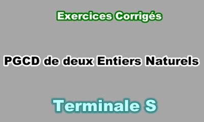 Exercices Corrigés PGCD de deux Entiers Naturels Terminale S PDF