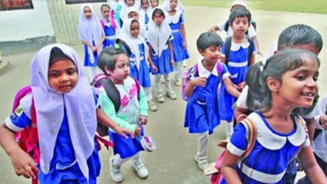 Primary Teachers Job Circular