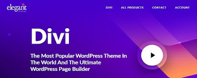 Divi Premium Wordpress Theme Free