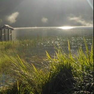 Wisata Alam Danau Taman Hidup probolinggo jawa timur